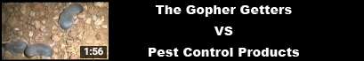 pest control and gophers